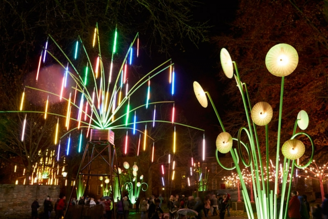 Garden of Light, TILT, Lumiere Durham 2015. Produced by Artichoke. Photo by Matthew Andrews