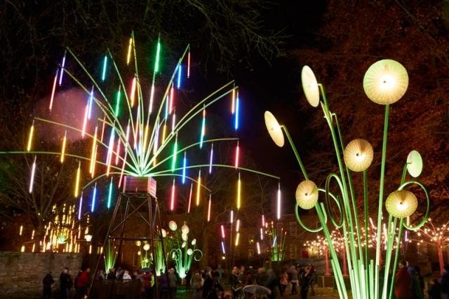 Garden of Light, TILT, Lumiere Durham 2015. Produced by Artichoke. Photo by Matthew Andrews